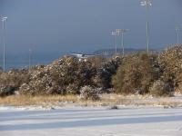 december-field-pics-2014-13