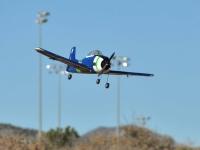 feb-field-pics-2013-25
